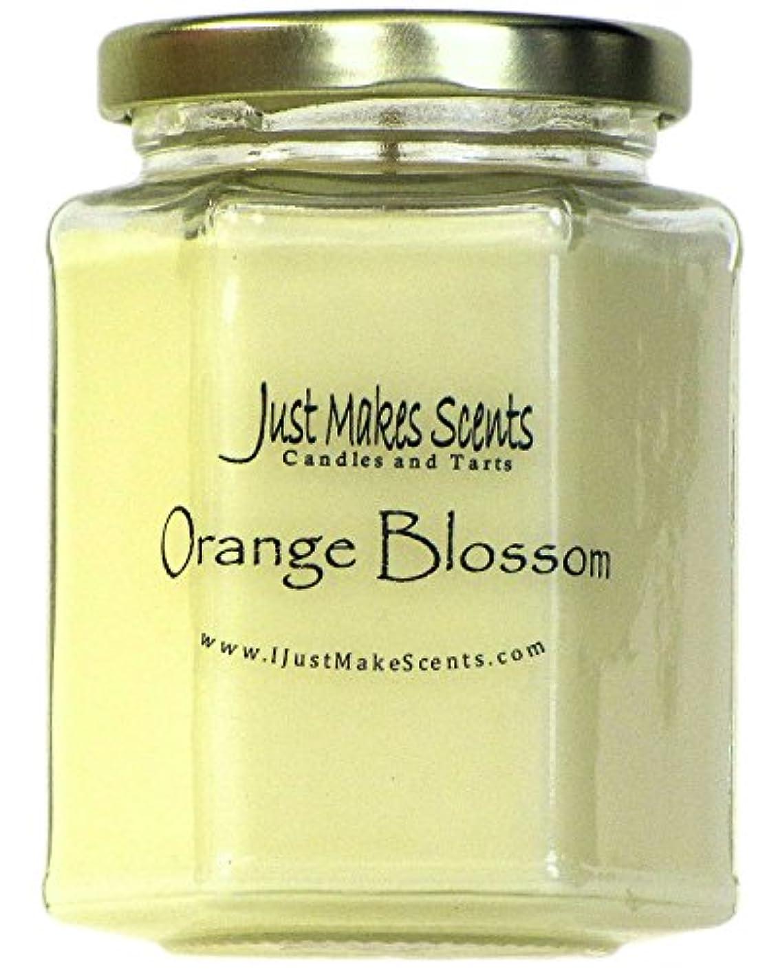 再生可能重要マガジン(1 Candle) - Orange Blossom Scented Blended Soy Candle Strong Spring Floral Fragrance Hand Poured in the USA by...