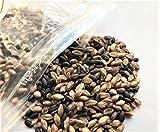 もち麦 黒米 W ブレンド 熊本県産 1kg (500g × 2袋 ) 食物繊維 βグルカン ポリフェノール 真空パック 1k