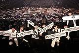 【日本限定版】 INFINITIZE SHOWCASE SPECIAL DVD 『THE MI...