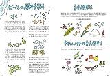 ビール語辞典: ビールにまつわる言葉をイラストと豆知識でごくっと読み解く 画像