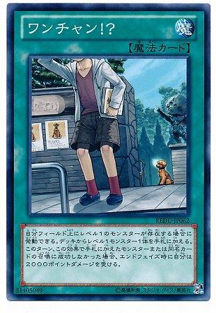 遊戯王/第8期/1弾/REDU-JP062 ワンチャン!?