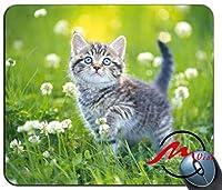ZMviseグレー子猫背景ファッション漫画マウスパッドマットカスタム四角形ゲームマウスパッド