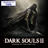 DARK SOULS II: SCHOLAR OF THE FIRST SIN (DirectX 11対応版) [オンラインコード]