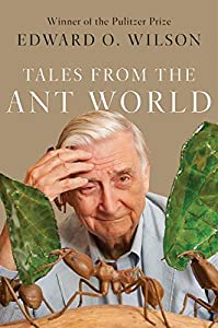 Tales from the Ant World (English Edition)
