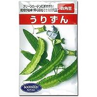 [春~初夏まき 野菜タネ]うりずん(琉球四角豆・りゆうきゅうしかくまめ) の種3袋セット ノーブランド品