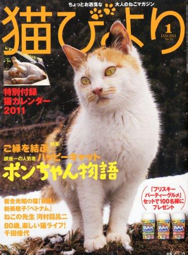 猫びより 2011年 01月号 [雑誌]