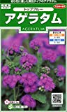 サカタのタネ 実咲花6070 アゲラタム トップブルー 00906070 10袋セット