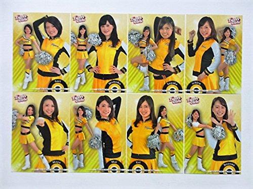 BBM2016プロ野球チアリーダー「華」◆阪神/Tigers Girls◆レギュラーコンプ全8種≪ベースボールカード≫