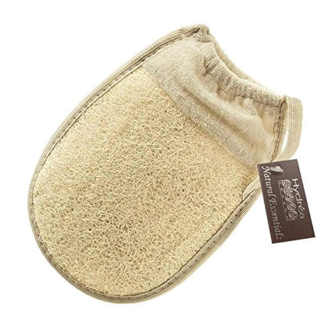 冷蔵庫ウェブぬるいHydrea London Egyptian Loofah Glove with Elasticated Cuff - 伸縮性カフとハイドレアロンドンエジプトのヘチマグローブ [並行輸入品]