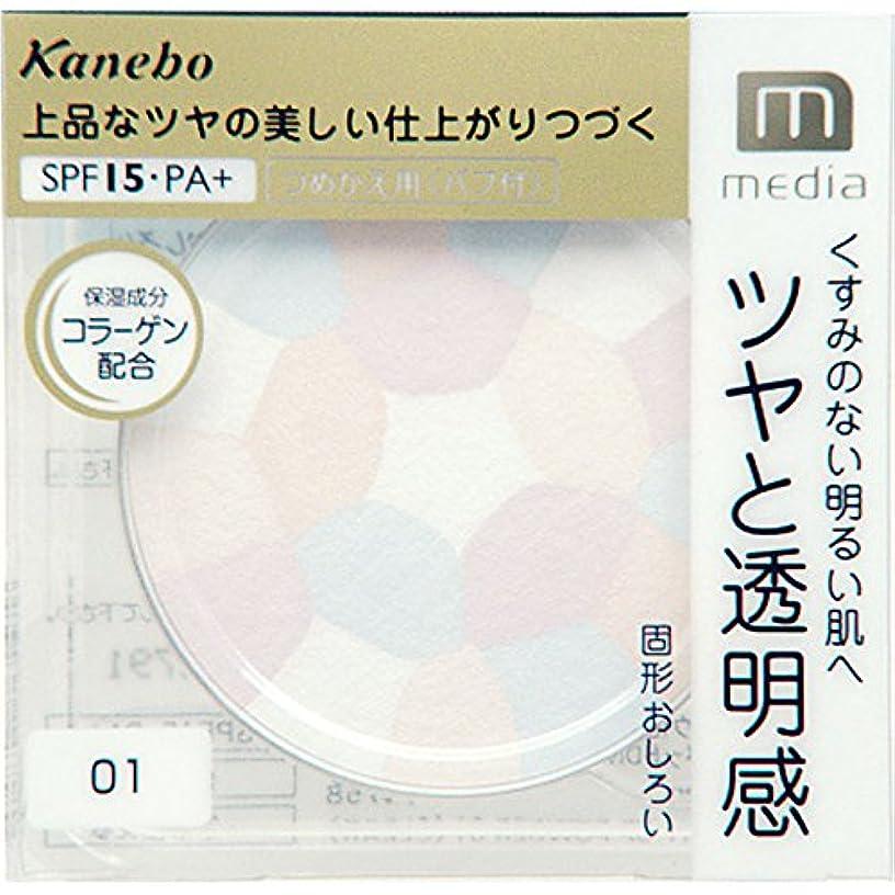 完全に乾く傾いたハグカネボウ メディア(media)ブライトアップパウダー 01クリア