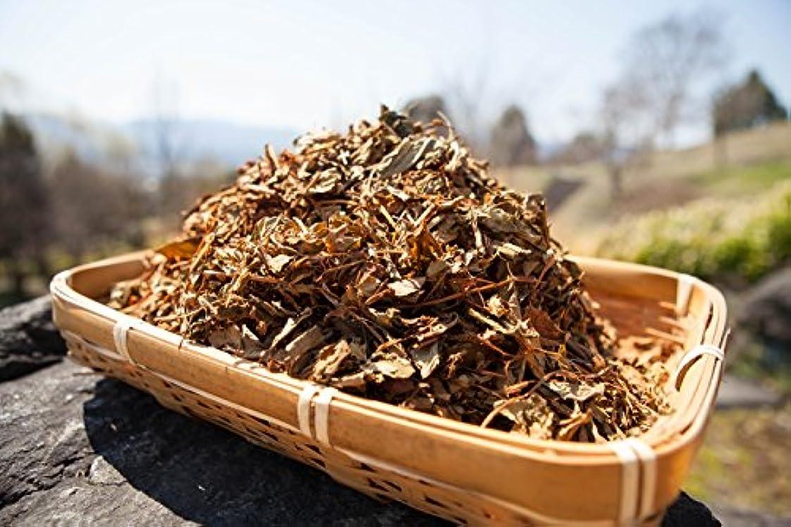 ニコチン膨らみ失効どくだみ 乾燥刻み 100g 徳島産