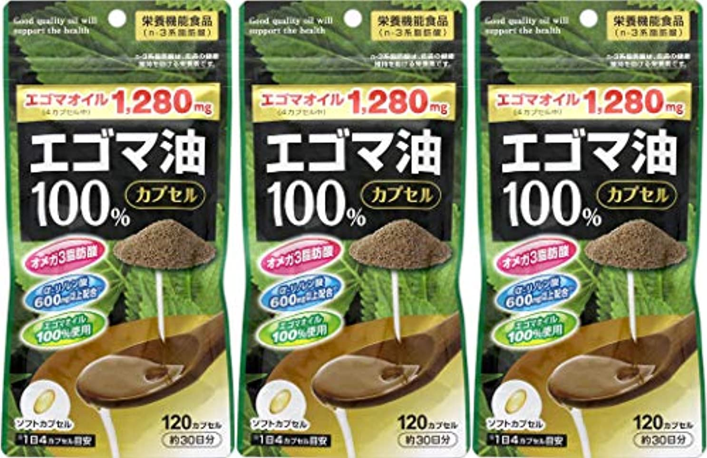 発生する香水参照【3個セット】エゴマ油100%カプセル 120カプセル