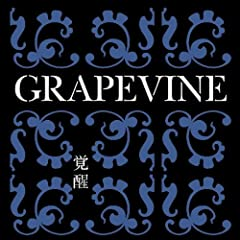 GRAPEVINE「TIME IS ON YOUR BACK」のジャケット画像