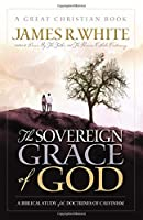 The Sovereign Grace of God: A Biblical Study of the Doctrines of Calvinism (Reformation Press Edition)