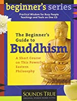 The Beginner's Guide to Buddhi