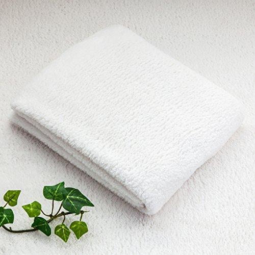 【柔らかさの概念を変える 肌に優しいマイクロファイバー 極柔フェイスタオル(お得10枚セット)】 実感できる吸水性 なめらかタオル 乾きも早い速乾タイプ (ホワイト色) ホワイト フェイスタオル