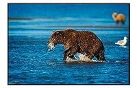 ブラック アルミ合金フレーム アートプリント ホーム動物装飾画(ブラウンクマ、魚を捕まえる、川)35x50cm
