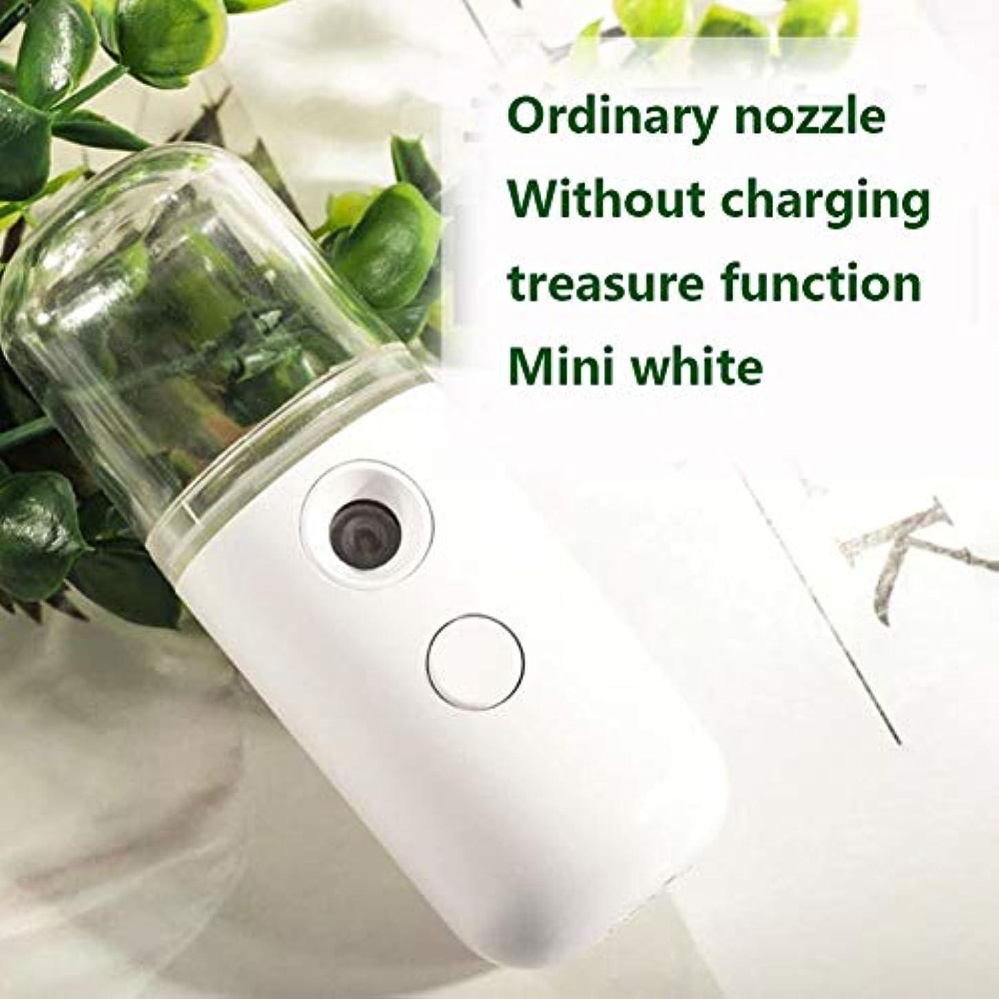 クラシックナノフェイシャルミスターフェイシャルスプレーヤーナノイオンスプレーヤー保湿オイルコントロール、非常用電源、複数のスタイル (Color : Mini-white)