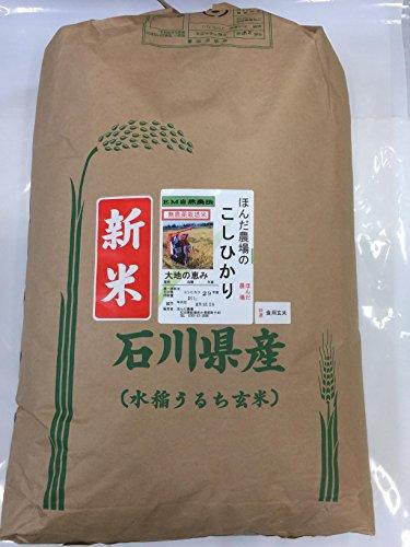 食用玄米 令和元年産 新米 石川県産 無農薬 こしひかり EM自然農法 大地の恵 玄米 送料込み (30kg)