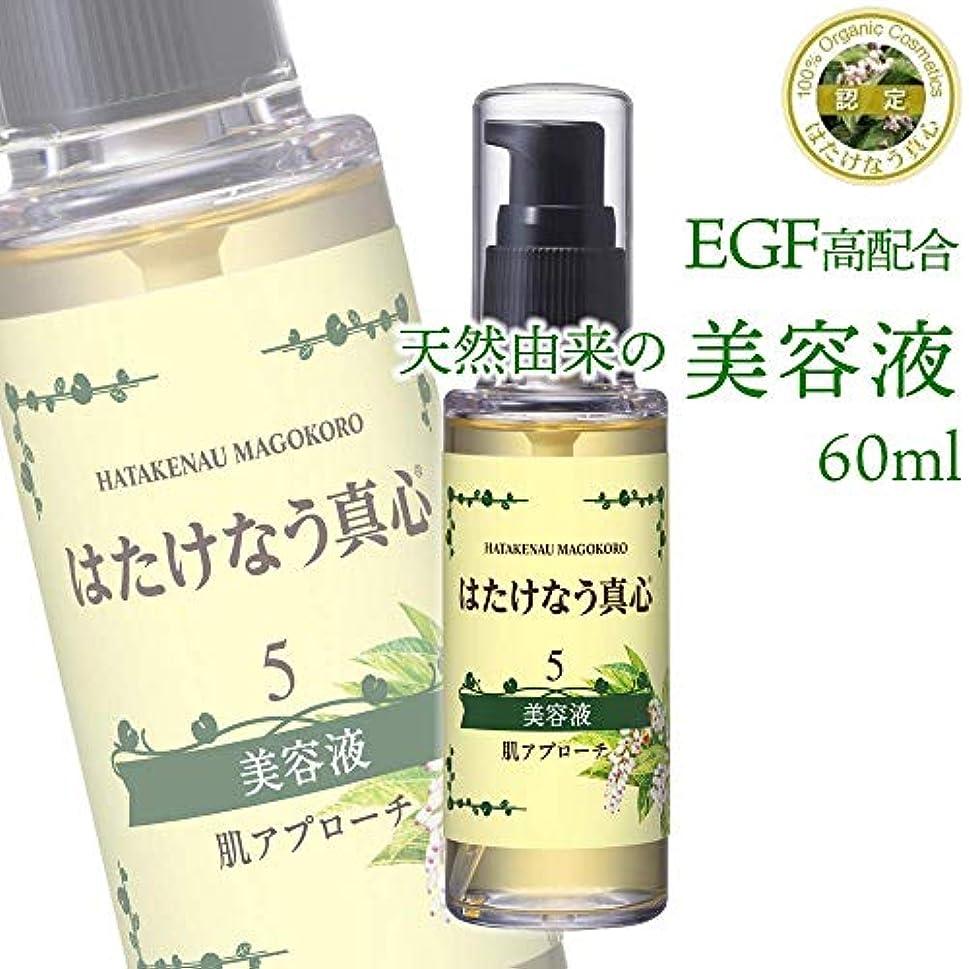 コンデンサーラップ専制●美容液60ml?5番?EGF?肌アプローチ