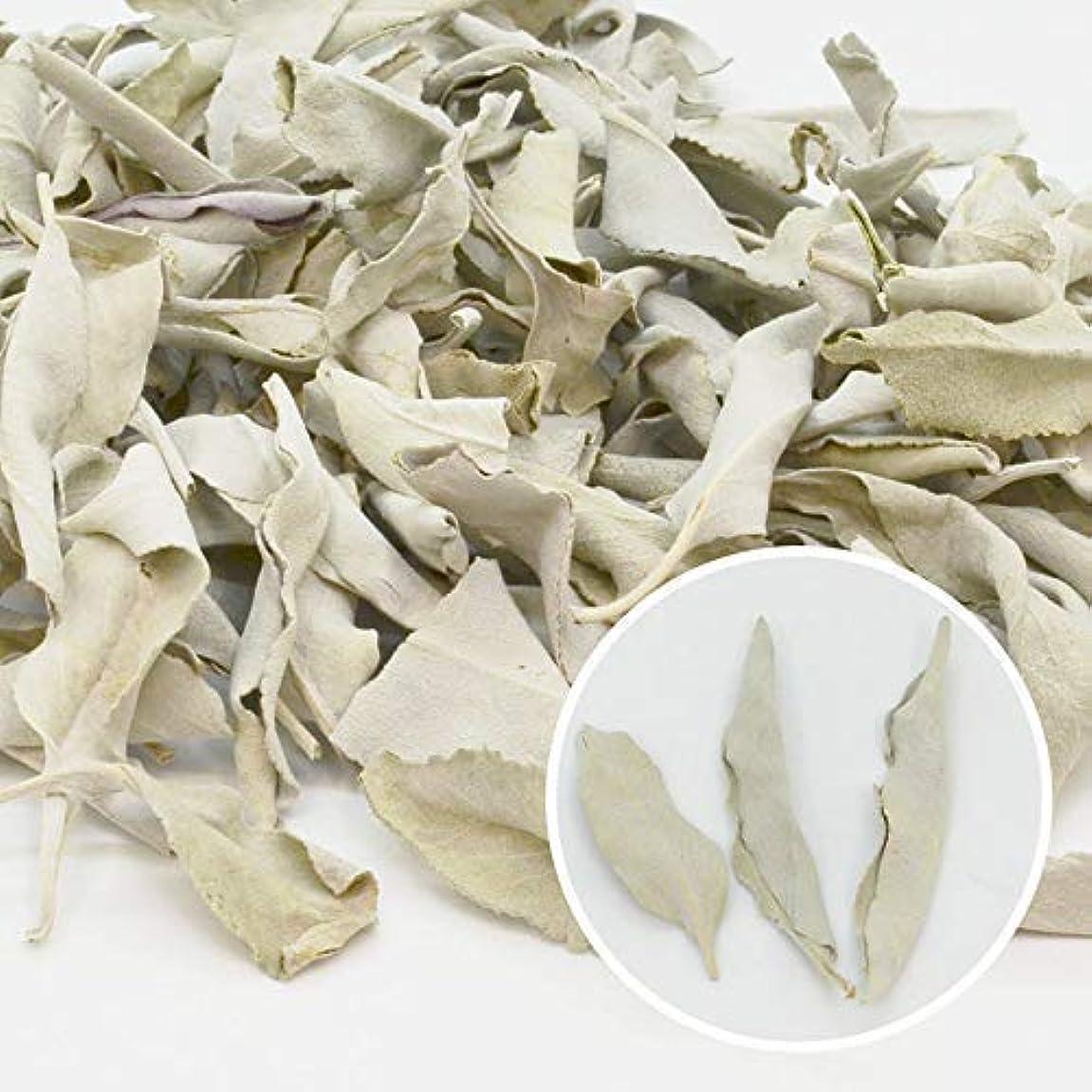 エピソード特異な絶縁する高品質 無農薬 ホワイトセージ 枝無し(リーフ) 約10g カリフォルニア産 浄化用 お香に