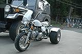 125ccトライク完成車 白色クラッチなし デフ付 好燃費 ZH-SR125-3L