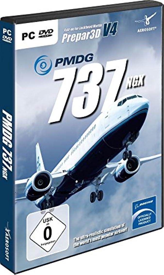 レンズ食事を調理するパレードPMDG 737 NGX for P3D V4 (輸入版)
