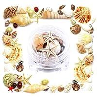 ZoCenterShop(TM) 海のシェル1ピースネイルアートラインストーンキラキラダイヤモンド宝石3DのヒントDIYの装飾