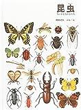 昆虫 (福音館の科学シリーズ) 画像