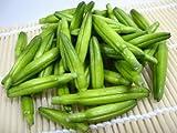 高級中華野菜 金針菜 きんしんさい 80g