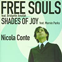 Free Souls/Shades of Joy [7 inch Analog]