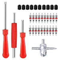 ZHSMS Valve Core Tool Set with 20Pcs Valve Cores 10Pcs Tire Valve Caps 4-Way Valve Tool Dual Single Head Valve Core Remover Tire Repair Tool [並行輸入品]