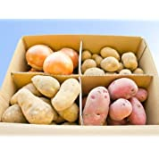 [選べるじゃがいも]北海道十勝幕別町産じゃがいも500g×4種+玉ねぎの選べるセット
