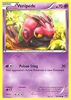 Pokemon - Venipede (51/146) - XY