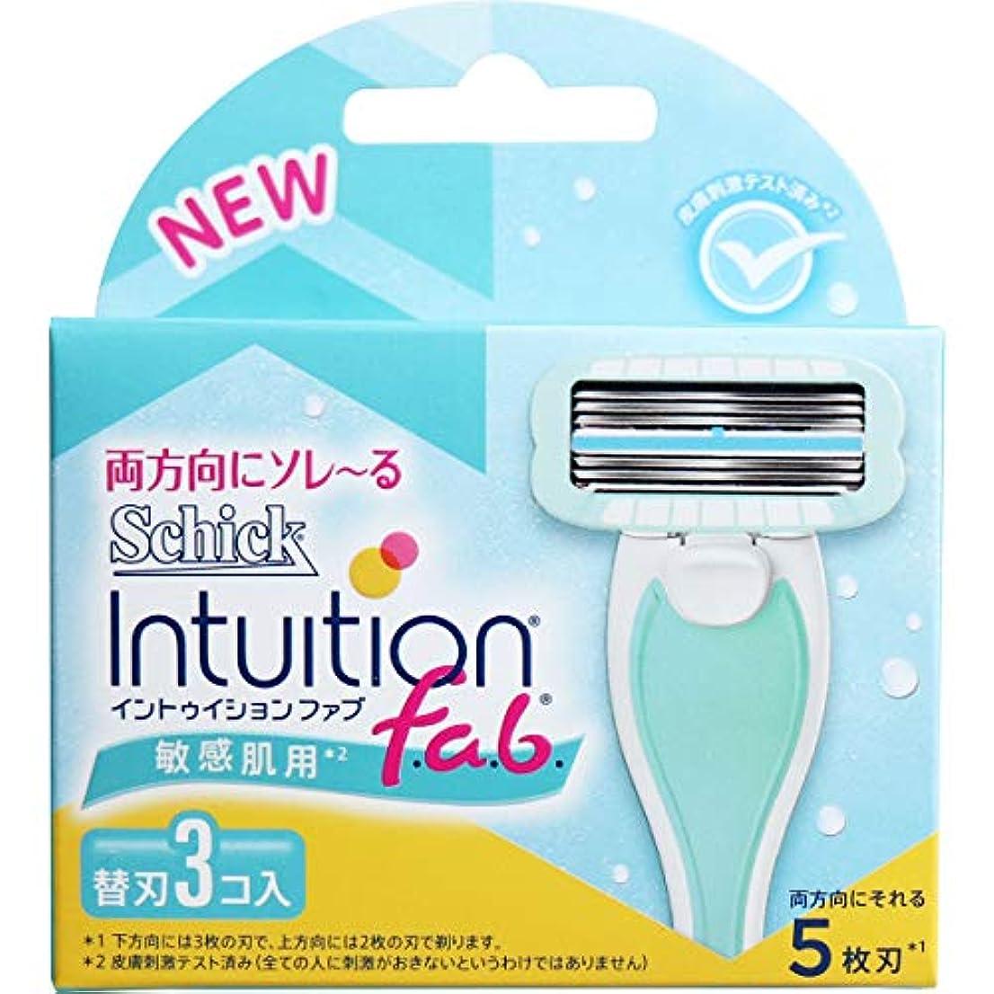 酸っぱい死すべきセミナーシック イントゥイション ファブ 敏感肌用 替刃3個入(単品)