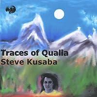 Traces of Qualia