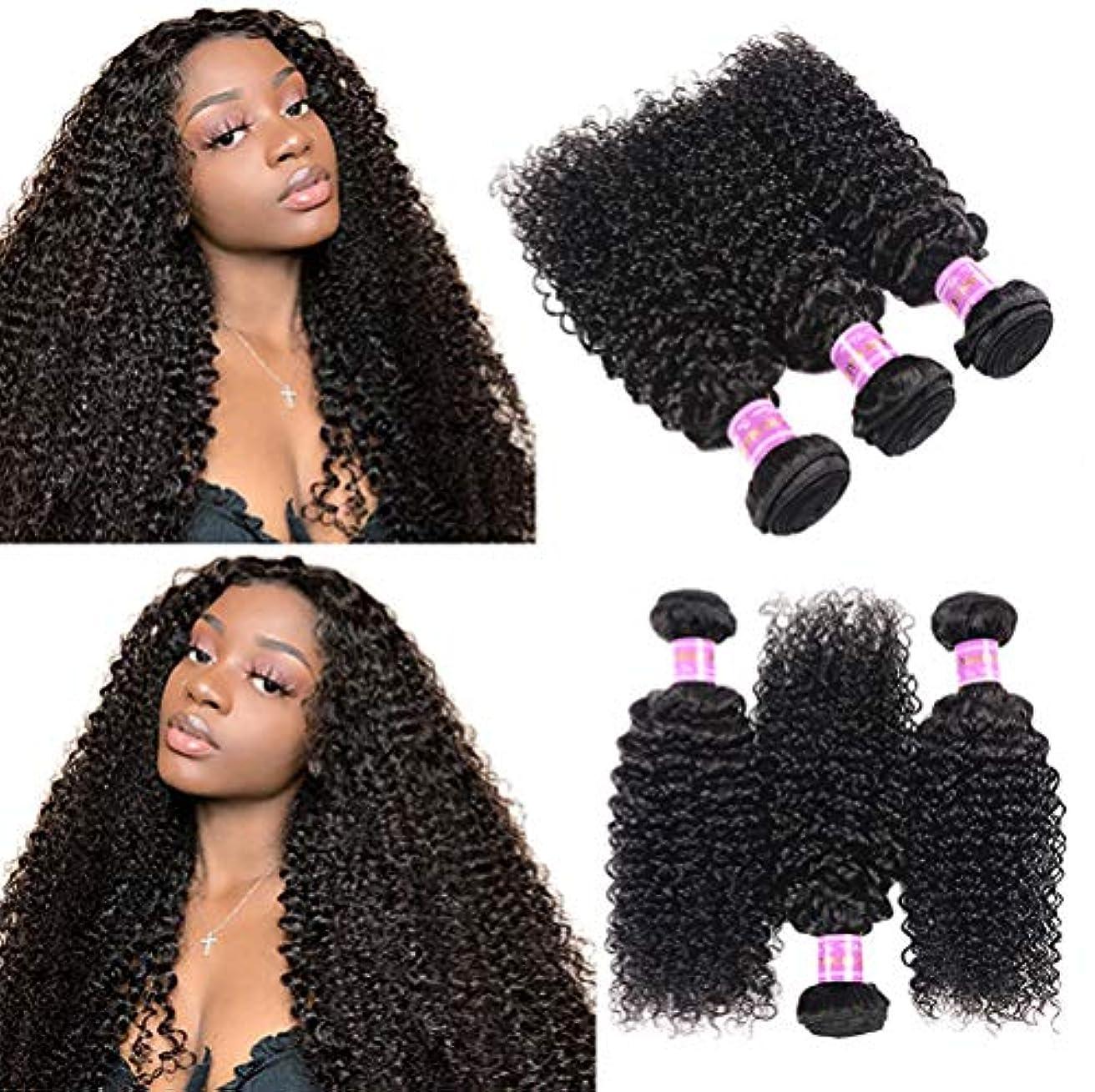 イチゴ仮称静かに女性150%密度ブラジルの水の波髪の束100%の未処理のバージンレミー人間の毛髪の拡張子1バンドル変態巻き毛