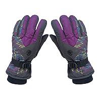 スキー グローブ スノー 手袋 スキーグローブ 冬 防寒 あったか 冷え対策 メンズ レディース ユニセックス 湿気取り 伸縮性 通気性 多機能 撥水加工 人気 ふわふわ 裏起毛 バイク サイクリング 山登り お釣り スポーツ 耐久性 おしゃれ