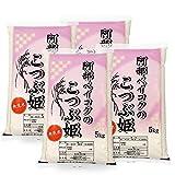 【精米】 無洗米 20kg (5kgx4袋) こつぶ姫 山形