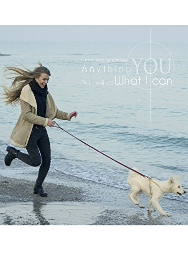 PETBABA(ペットババ)本革 リード 犬用 トレーニング ダークブラウン-1.5 m【並行輸入品】