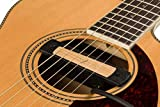 Fender アコースティックピックアップ Cypress Acoustic Pickup