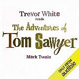The Adventures of Tom Sawyer 画像