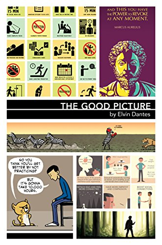 The Good Picture (English Edition)