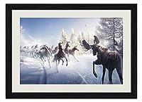 冬の馬 動物の写真 壁掛け黒色木製フレーム装飾画 絵画 ポスター 壁画(30x40cm)