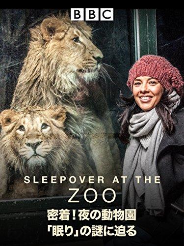密着!夜の動物園 「眠り」の謎に迫る (吹替版)