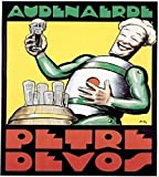 Petre Devos Robot Poster as seen on The Big Bang Theory
