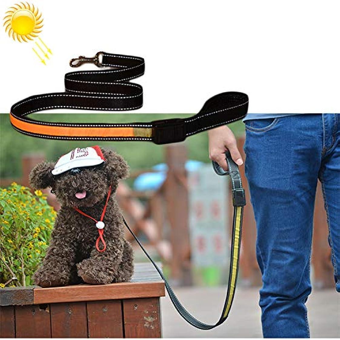 灰そこ幻想的KANEED ペットハーネス 中小型犬 猫 散歩 お出かけ用 1.2m 中型および大型犬のペットソーラー USB充電LEDライトトラクションロープ (色 : 黄)