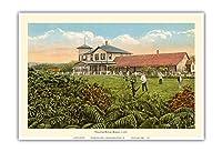 ハワイ火山ハウス - クレーターを直接見下ろす - ハワイ火山国立公園 - ビンテージなハワイアンカラーのハガキ c.1921 - アートポスター - 33cm x 48cm