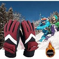 充電式ヒーターグローブ ホットグローブ バイク スキー スポーツ 登山 アウトドア 男女兼用 防寒対策