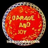 Damage & Joy [12 inch Analog]